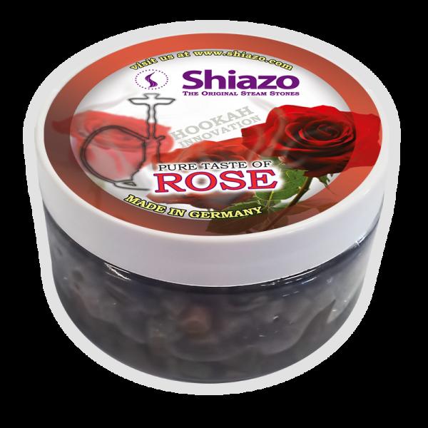 Shiazo Rose